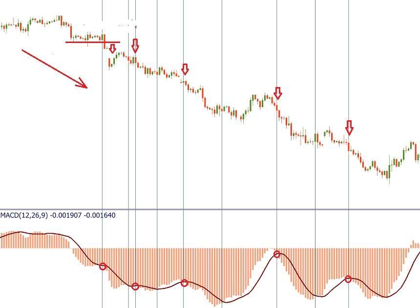 Как торговать на Форекс с индикатором MACD